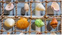 post-shells